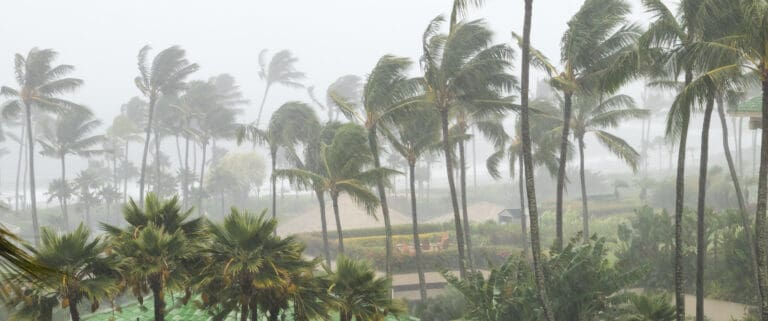 Tropical Storm Sam Is Catching Attention